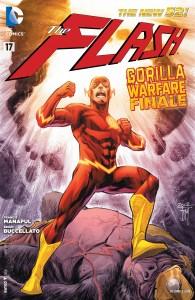 Flash 17 pg1