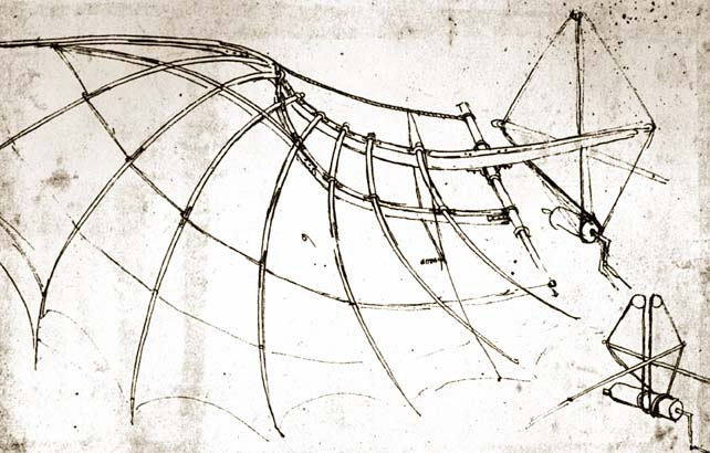 leonardo-da-vinci-bird-wing-with-mechanical-connections6
